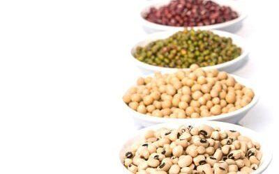 Los antinutrientes: ¿la quinta columna de la alimentación vegetal?