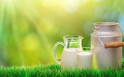 ¿La leche es buena o mala para la salud?