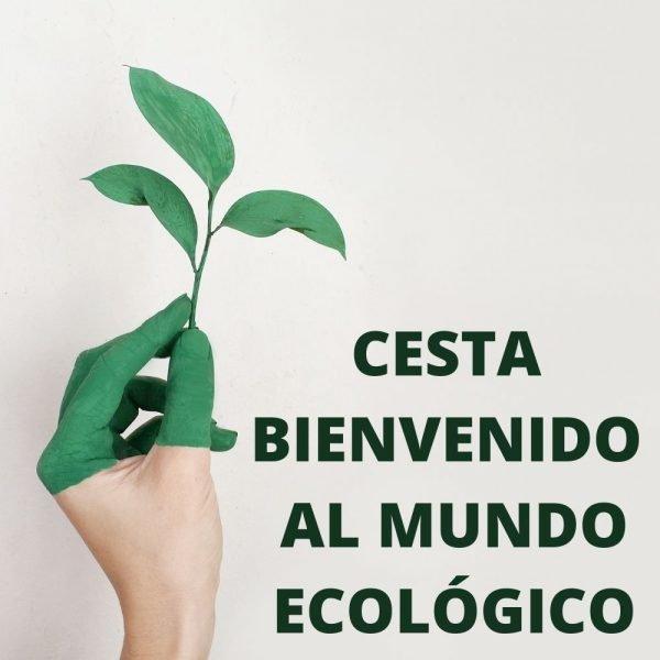 CESTA-BIENVENIDO-AL-MUNDO-ECOLOGICO.jpg