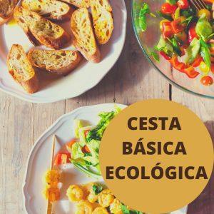 CESTABASICA-ECOLOGICA-1.jpg